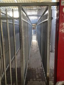 Checkpoint Qalandiya. Photo: DV