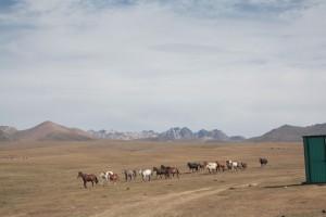 Hirten in Kirgistan